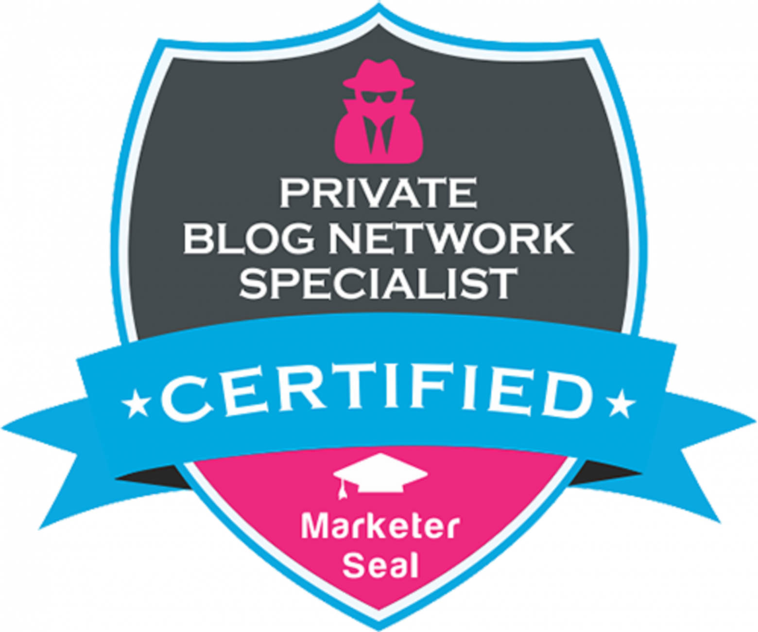 How to Become a Certified BLOG SPECIALIST – Work from Home and MAKE MONEY Online