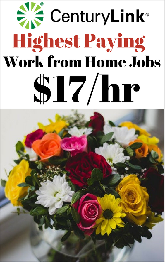 This Work from Home Job Pays You up to $17 an hour, Plus Full Benefits for All Your Family