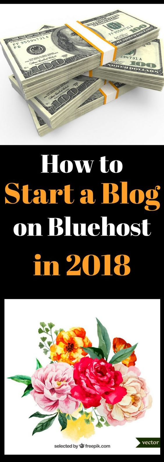 Cheap WordPress Hosting - My First Date with Bluehost Web Hosting